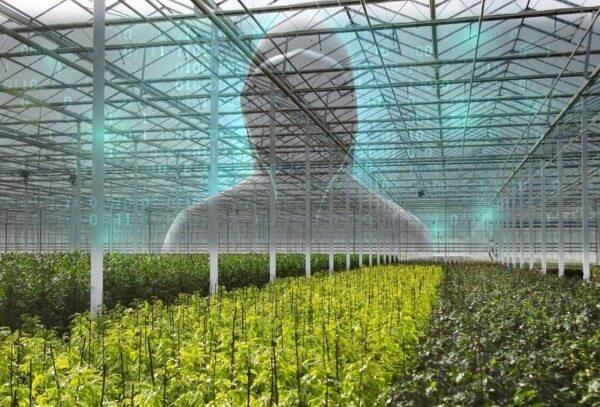 Digitale veiligheid tuinbouw